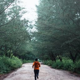 A jogger surrounded by trees while running outside.